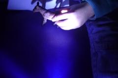 201703-Travail-avec-les-lampes-PSMS-03
