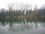 Sortie ENS Bois de La Batie MS-GS 11