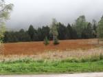 2013-09-19 Sortie ENS Lac Luitel CE2-CM1 14