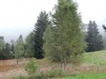 2013-09-19 Sortie ENS Lac Luitel CE2-CM1 15