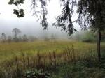 2013-09-19 Sortie ENS Lac Luitel CE2-CM1 44