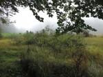 2013-09-19 Sortie ENS Lac Luitel CE2-CM1 45