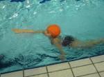 2014-02 piscine CP-CE1 07