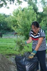 20140828 - Soirée bricolage & jardinage 16