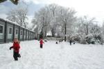 20150202 neige 25